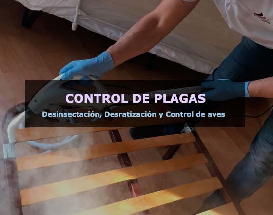 Empresa de Control de plagas en Barcelona